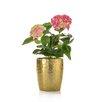 Castleton Home Hydrangea Floral Arrangements in Vase