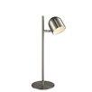 "Luxeria Zone Lighting Timon 19"" Desk Lamp"
