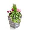 Castleton Home Cedar Cyclamen Floor Floral Arrangements in Planter