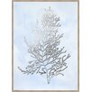 Ashton Wall Décor LLC 'Silver Foil Algae IV' Framed Graphic Art Print