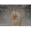 My Art Outlet 'Nat Geo Recognition a The Explosion' Photographic Print on Wrapped Canvas