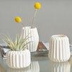 Langley Street Elkhart 3 Piece Vase Set