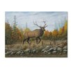 Trademark Fine Art 'Autumn Elk' Graphic Art Print on Wrapped Canvas