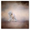 Trademark Fine Art 'Bichon on the Go' Graphic Art Print on Wrapped Canvas