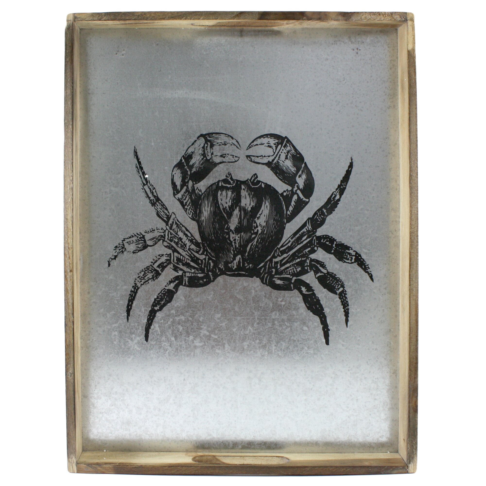 Fetco Home Decor Wareham Crab Framed Graphic Art