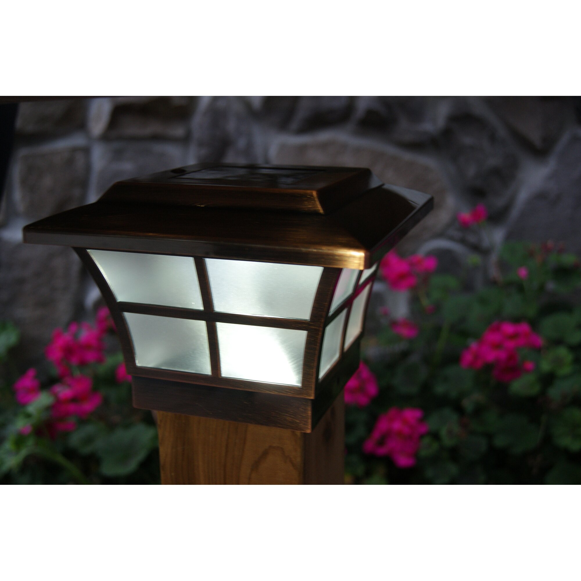 Classy Caps Solar 2-Light Fence Post Cap & Reviews   Wayfair