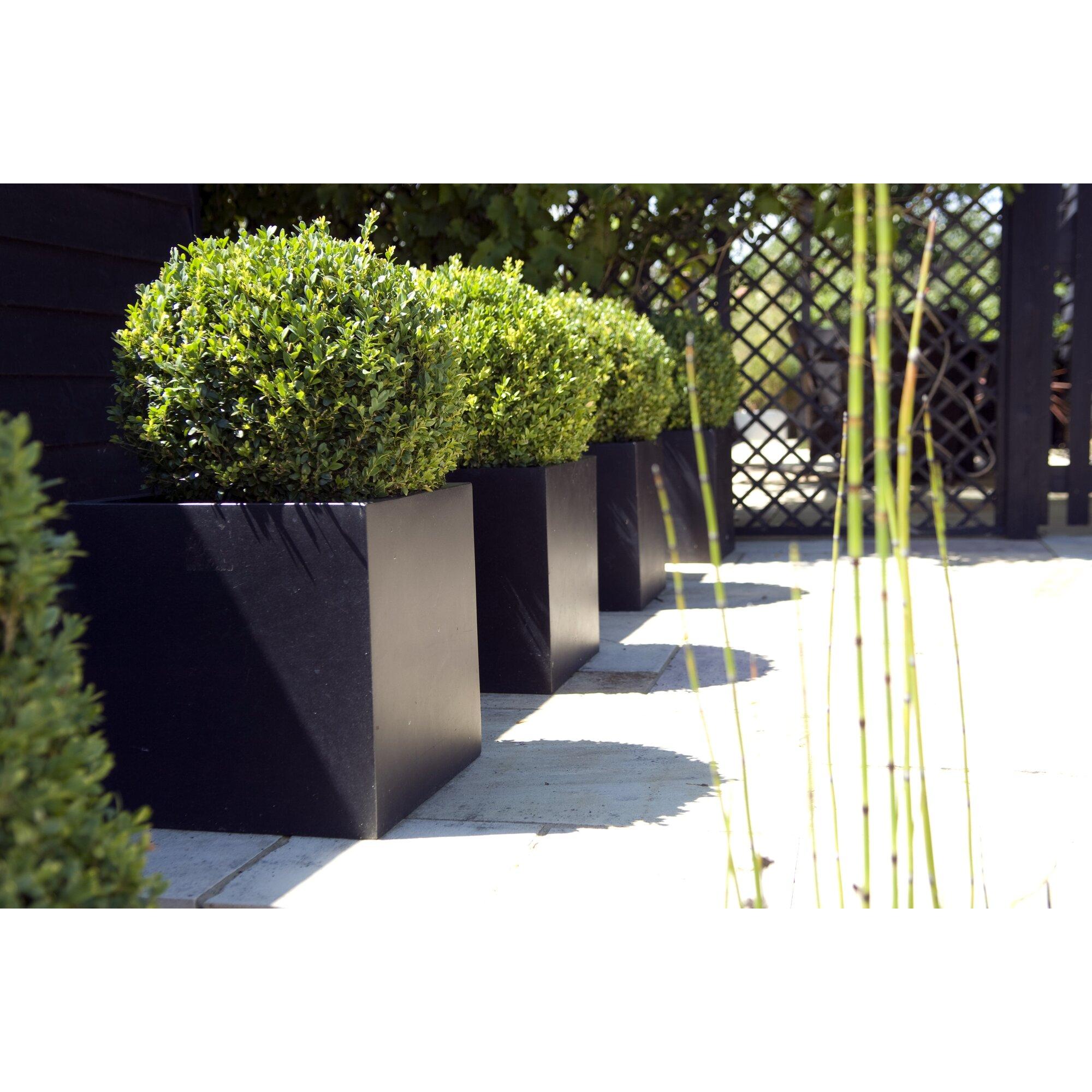 Garten living quadratischer pflanzkasten osage for Gartengestaltung quadratischer garten