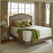 Botanical Bliss 12 Medium Firm Latex Mattress by Plush Beds