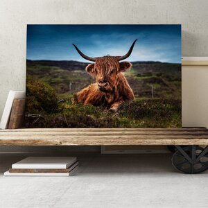 Cow in the Meadow Photographic Print on Canvas