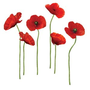 12-Piece Poppies Wall Decal Set