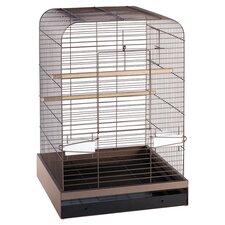 Madison  Bird Cage