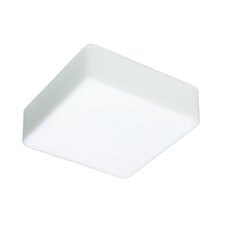 2-Light Opal Glass Flush Mount