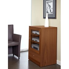 Pro X Audio Cabinet
