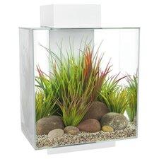 6 Gallon Edge Aquarium Kit