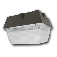 Medium Canopy Light Fixture with 150W M102/E Bulb