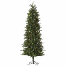 Carolina Pencil 9' Green Spruce Artificial Christmas Tree with 500 LED Multi-Colored Lights