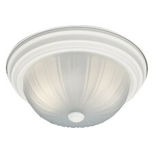 Ceiling Essentials 2-Light Flush Mount