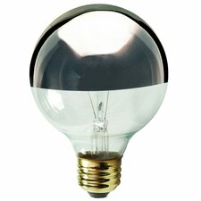 Gray/Smoke E12/Candelabra Incandescent Light Bulb (Set of 19)