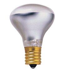 Intermediate 120-Volt (2600K) Incandescent Light Bulb (Set of 14)