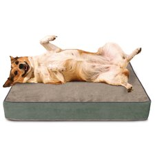 Gel Memory Foam Dog Bed with Microfiber Cover