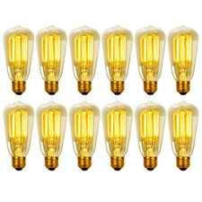 40W Vintage Edison S60 Squirrel Cage Incandescent Filament Light Bulb (Set of 12)