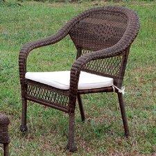 Edwin Lounge Chair with Cushion by Hokku Designs