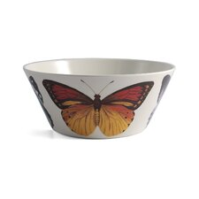 Metamorphosis 16 oz. Melamine Bowl (Set of 4)