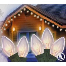 25 Light Transparent Christmas Light