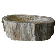 Fossil Wood Specialty Vessel Bathroom Sink by Novatto