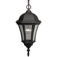 Curved Glass 1-Light Outdoor Pendant