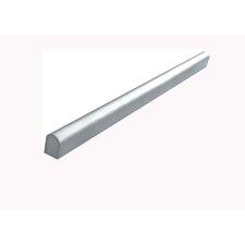 "12"" x 0.74"" Border Edge Tile in Stainless Steel"
