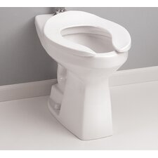 High Efficiency Commercial ADA Floor Mounted Flushometer 1.28 GPF Elongated One-Piece Toilet