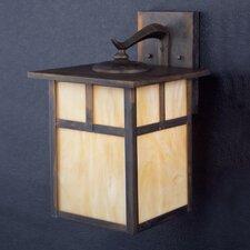 Daveney Rustic 1-Light Outdoor Wall Lantern