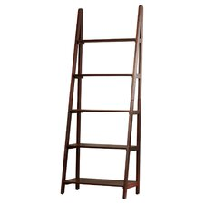 Irwin Ladder 72 Leaning Bookcase by Trent Austin Design