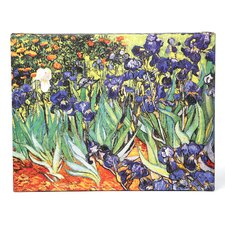 "'Irises"" by Vincent Van Gogh Painting Print on Canvas in Green and Purple"
