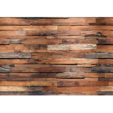 "Reclaimed 12' x 100"" Wall Mural"