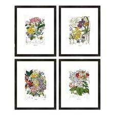 quick view botanical framed prints