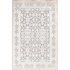 Chiquin Gray Area Rug