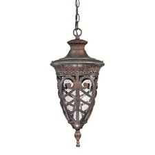 Aston 1-Light Outdoor Pendant