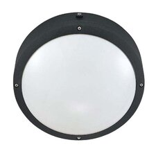 Hudson 2-Light Outdoor Flush Mount