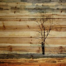 'Landscape & Nature Tree Stands Alone' by Parvez Taj on Wood in Brown