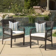 Benedetto Dining Arm Chair with Cushion (Set of 2) by Darby Home Co®