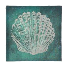 White Seashell Graphic Art on Canvas