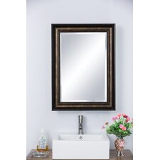 """22.25"""" x 30.25"""" Recessed or Surface Mount Medicine Cabinet"""