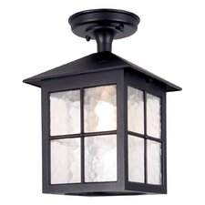 Winchester 1 Light Outdoor Hanging Lantern