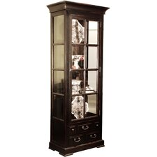 Stevenson Curio Cabinet by Darby Home Co