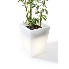Luminous Plastic Pot Planter