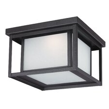 Hunnington 1-Light Outdoor Flush Mount