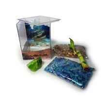 Pirate Aquarium Kit