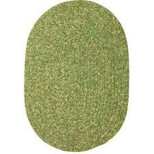 Reoti Green Indoor/Outdoor Area Rug